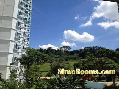 One common room and one single bed for rent at Bukit Gombak (short term/long term)