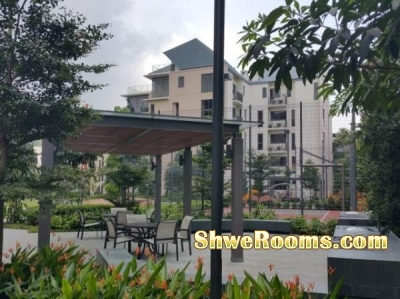 long Term-Yishun Mrt- Condo-One New Condo Common (Private) Room OR Master Bedroom will be available in beautiful, quiet environment