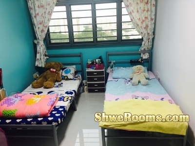 Common Room for Rent (One Lady)