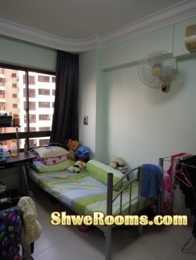 Looking for one female roommate (with aircon to rent)