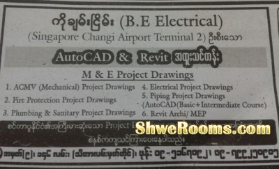 Building M&E Special class using with AutoCAD or Revit MEP