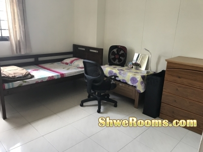 Sembawang single common room near by MRT to rent