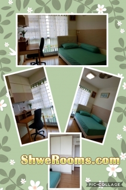 One common room for rent@Casa Clementi
