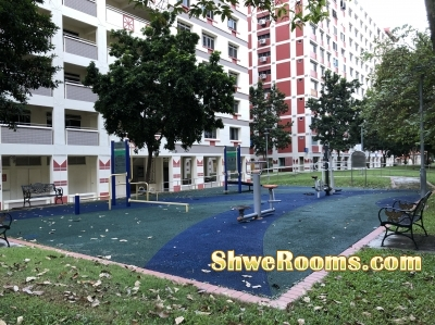 Looking For Short/Long Term One Common room at Tampines