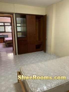 Long Term or Shoer Term ( HDB Room for rent near Toa payoh / Braddell )